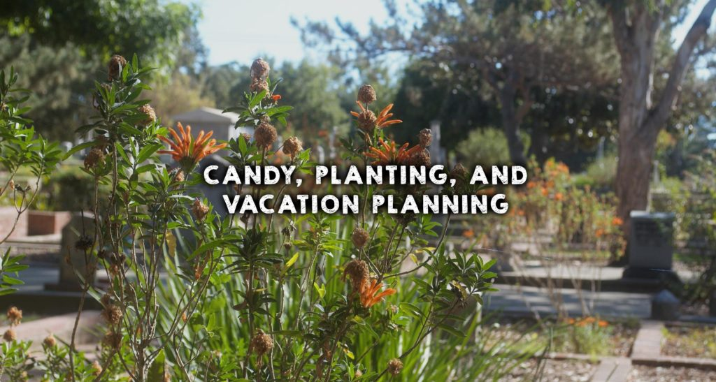 Candy, planting, and vacation planning