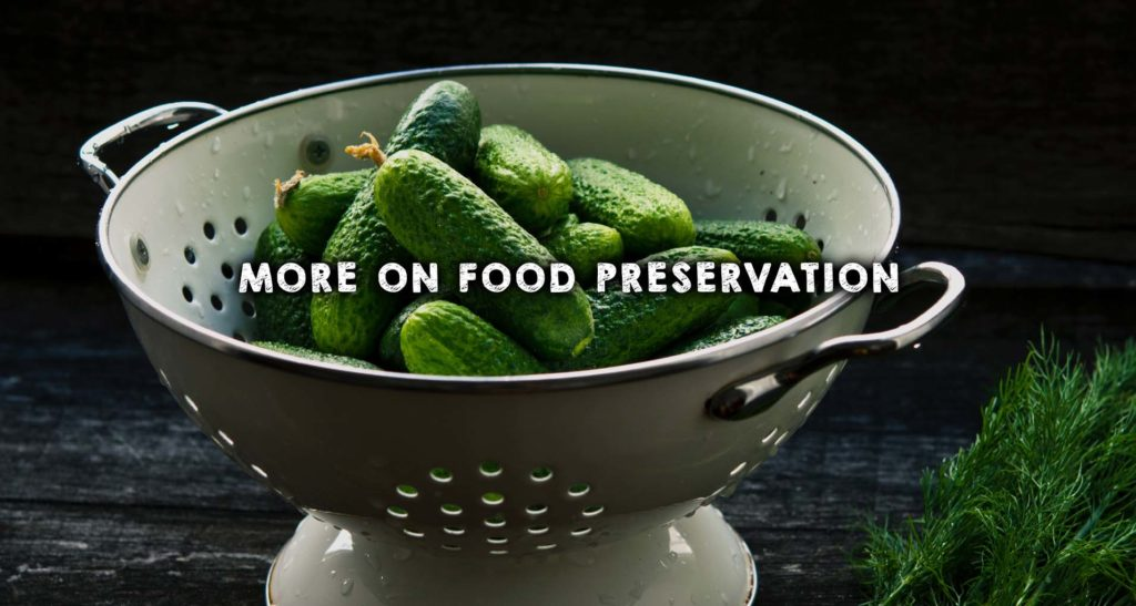 More on Food Preservation